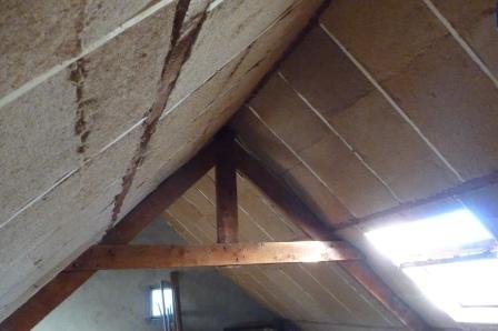 isolation laine de bois pour site